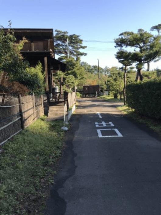 天守閣自然公園キャンプ場内の道路
