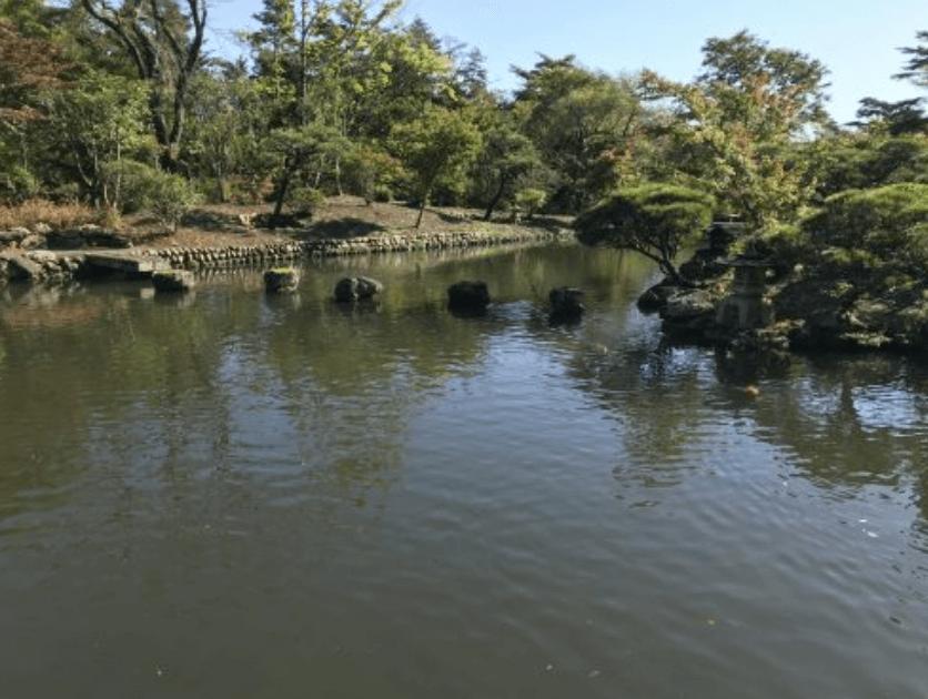 天守閣自然公園の池