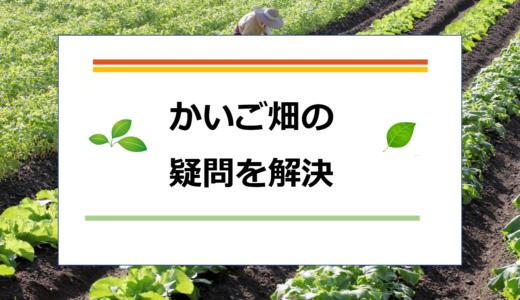 【かいご畑】の15の疑問を解決!どんな人におすすめ?!